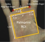 Deep Learning for touchless palmprint recognition Logo